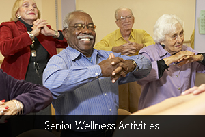 Senior Wellness Activities