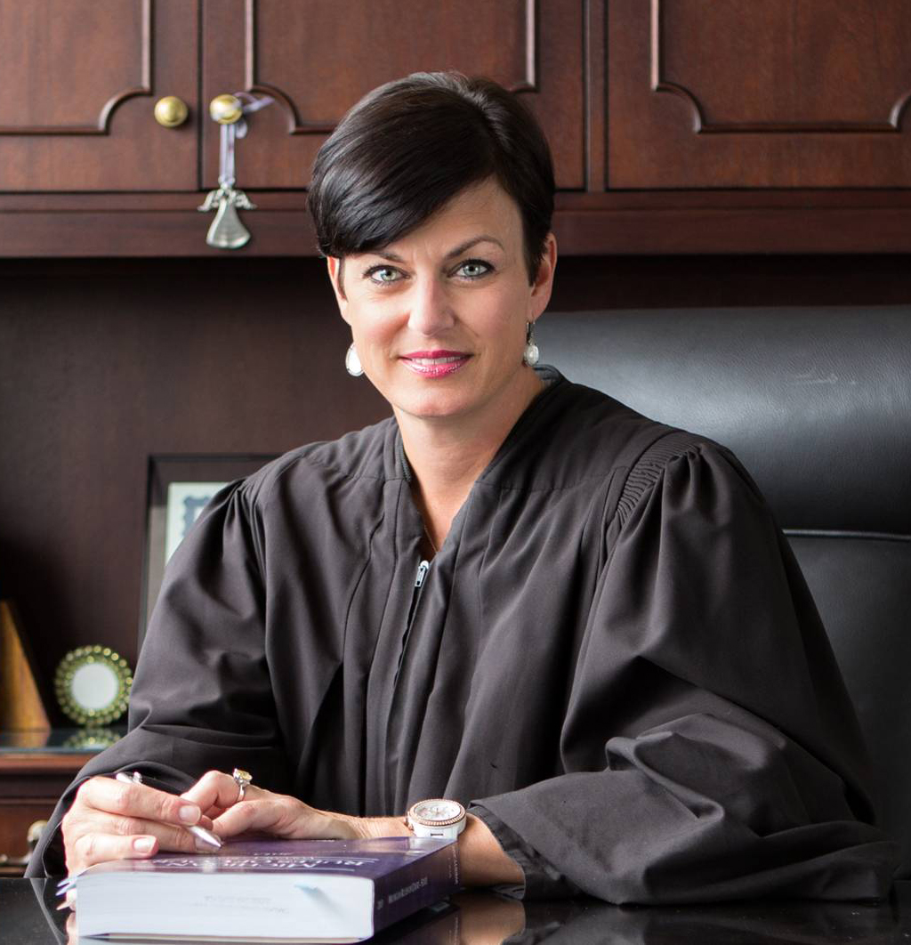 Elected To The Oakland County Circuit Court November 2008