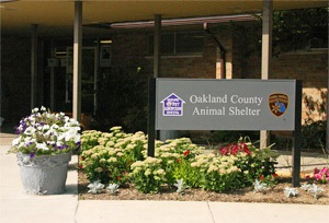 Oakland County Animal Shelter