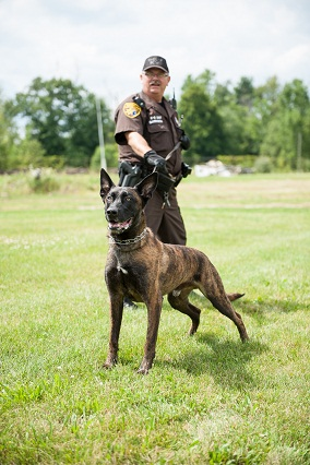Police Officer with Canine Officer