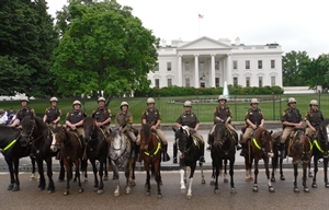 Patrolmen on Horses