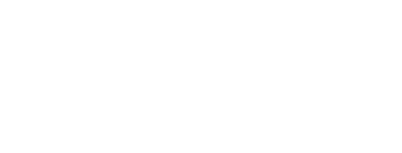 Michigan Reconnect